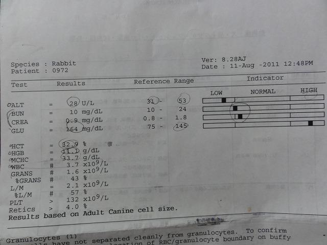 Sdsc01956