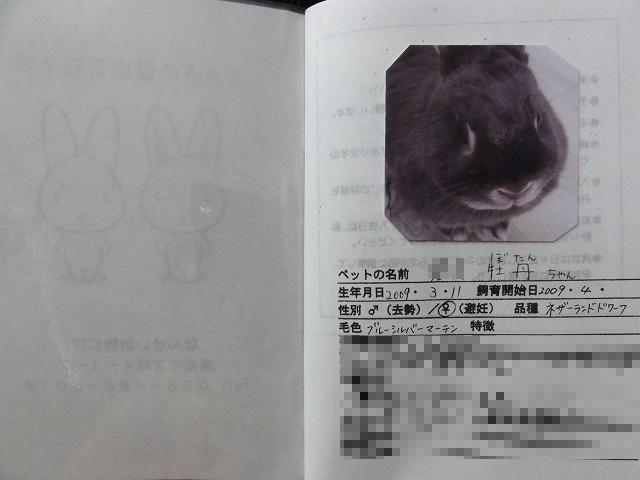 Sdsc01959